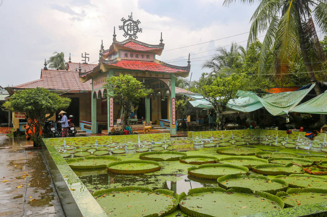Địa điểm du lịch Đồng Tháp 3