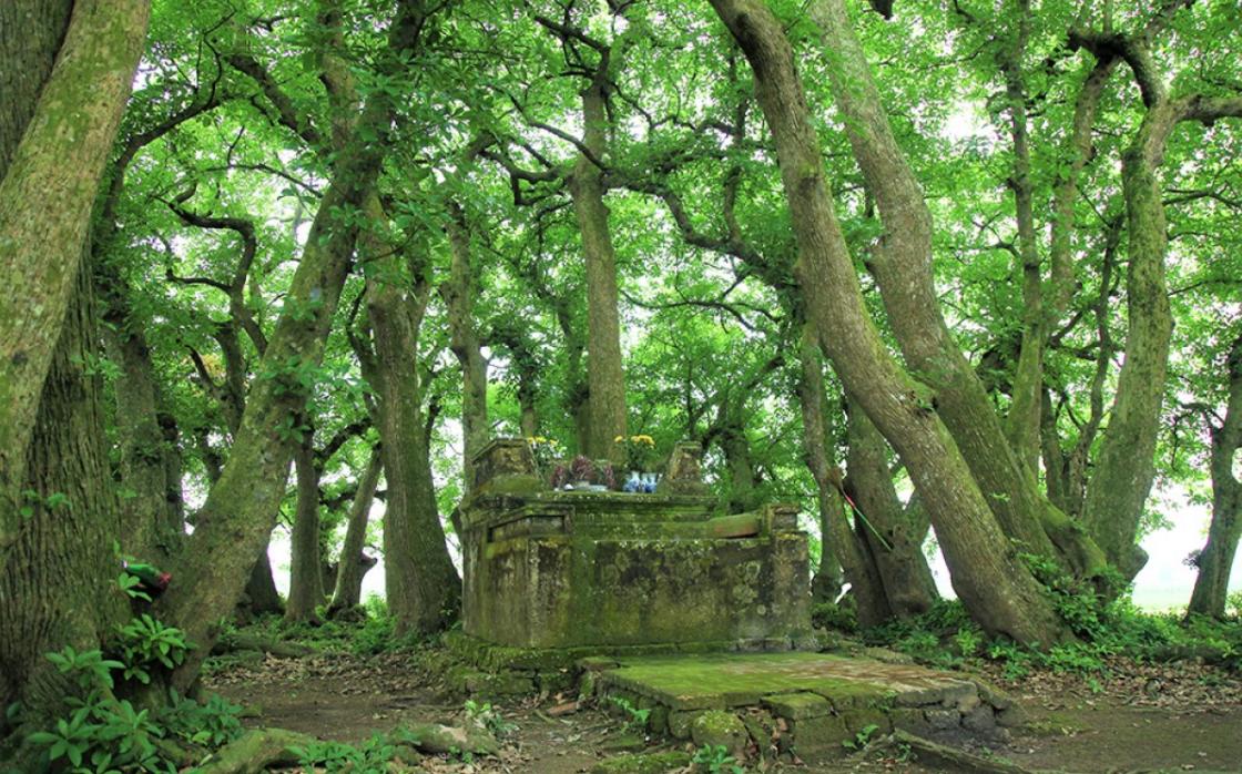 Địa điểm du lịch Phú Thọ 4