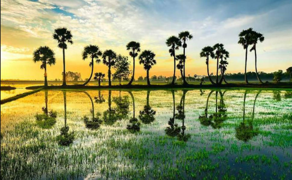 Du lịch Việt Nam 28