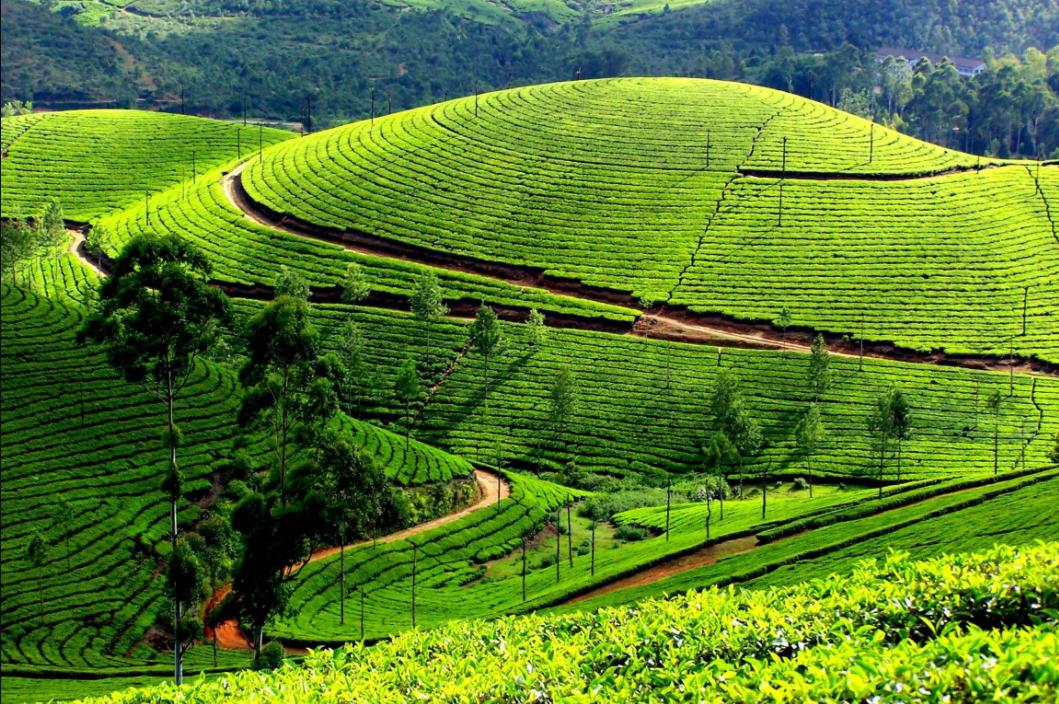 Du lịch Việt Nam 6