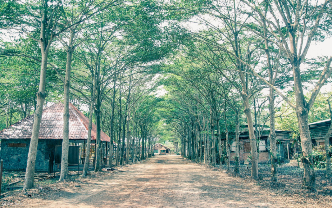 Địa điểm du lịch gia đình ở Hồ Chí Minh 13