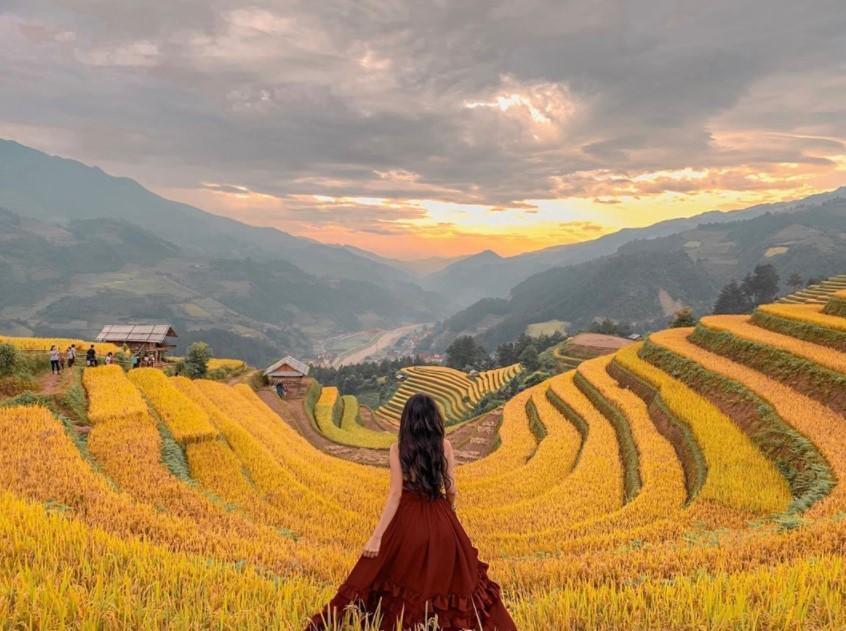 Thời điểm nào nên đi du lịch mùa lúa chín mù cang chải