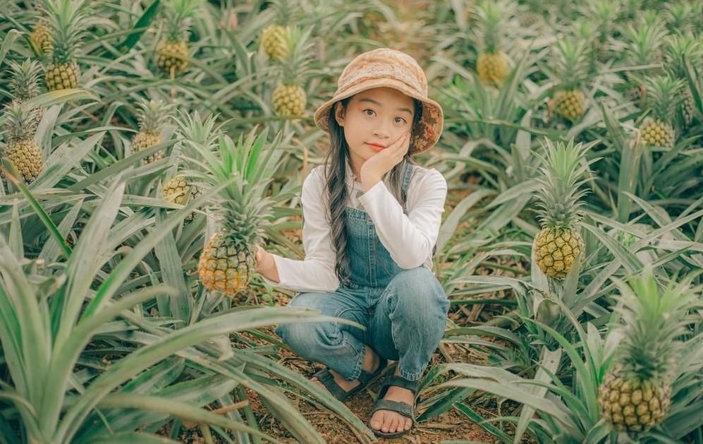 20+ Địa điểm du lịch Ninh Bình nổi tiếng nhất 2021