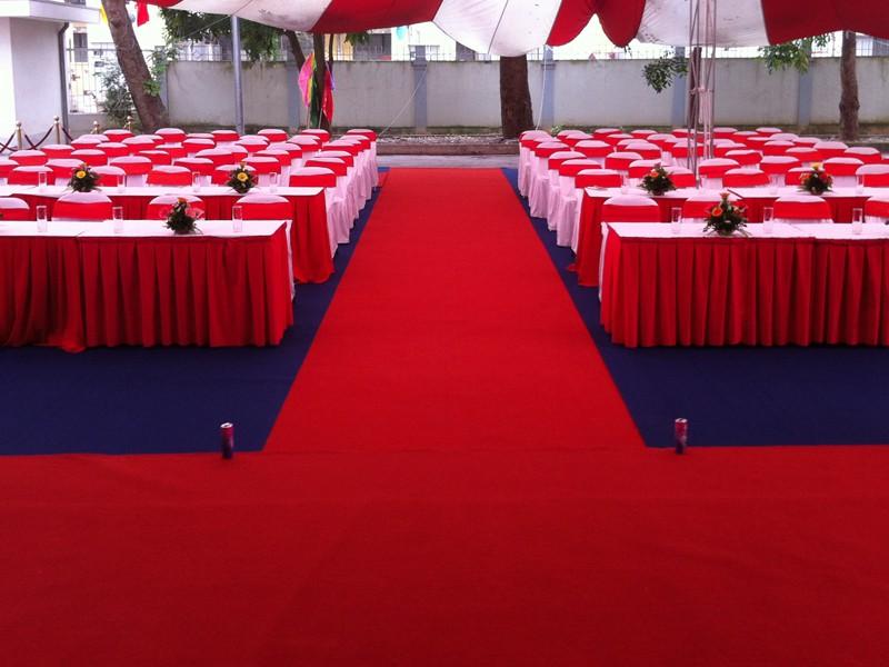 Cho thuê thảm đỏ - Luxtour 4
